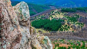 The Mirror Rock natural monument, the land pertaining to the village of Bryastovo