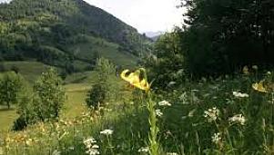 Olu-dere Gorge