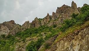Kovan Kaya